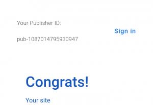 4742Google AdSense approve