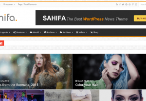 7705wordpress news or blog websites sell
